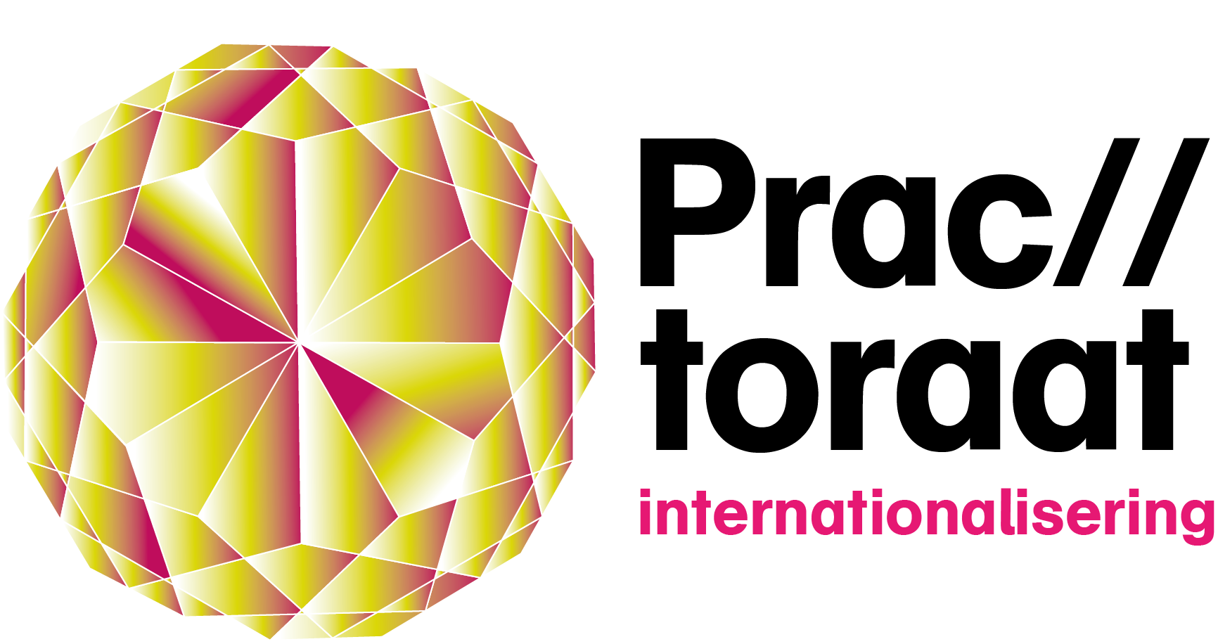 logo_practoraat_internationalisering